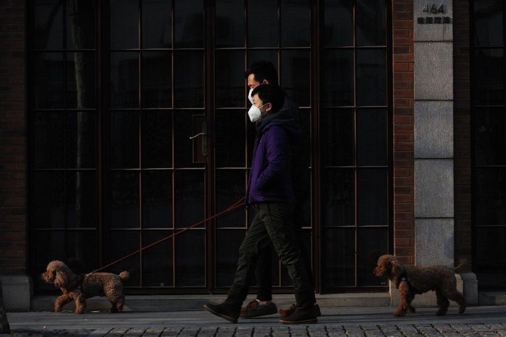 Corona Virüs Evcil Hayvanlardan İnsanlara ya da İnsanlardan Evcil Hayvanlara Bulaşır Mı?